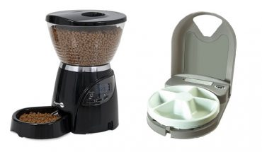 cat food dispensers reviewed